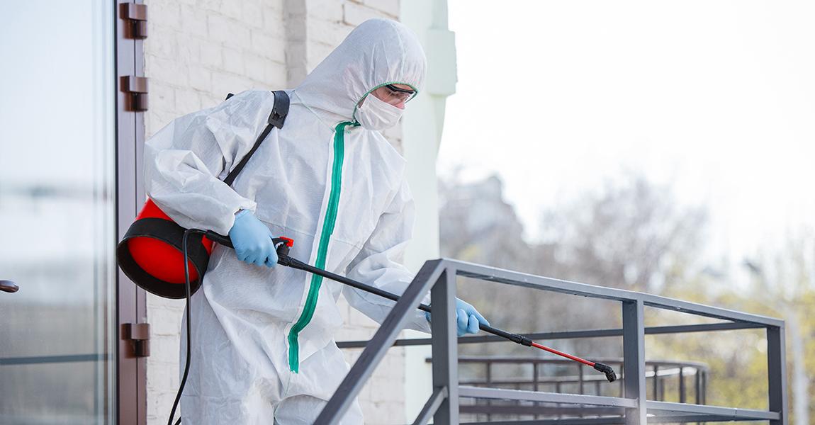 ¿Qué requisitos deben cumplir las empresas de control de plagas?